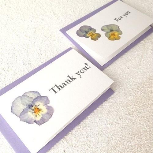 【3枚セット】ビオラの押花カード