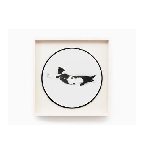 Sophie Calle - Vinyl - Souris Calle Edition