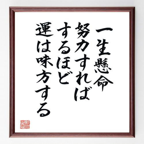 名言色紙『一生懸命努力すればするほど運は味方する』額付き/直筆済み/B0224