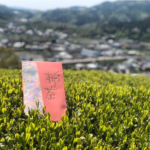 新茶セット(厳選3袋)