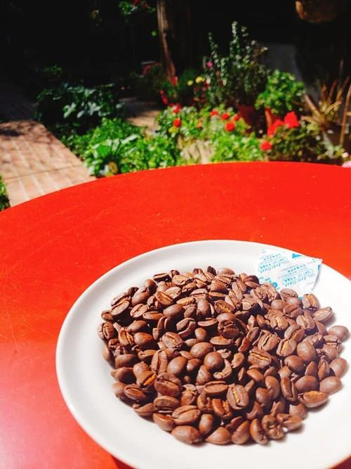 コーヒー豆・ケニア200g