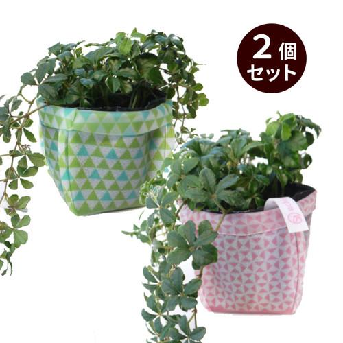 【キャンペーン特価】uchi-green 鱗 ピンク&グリーン(gr-0108)