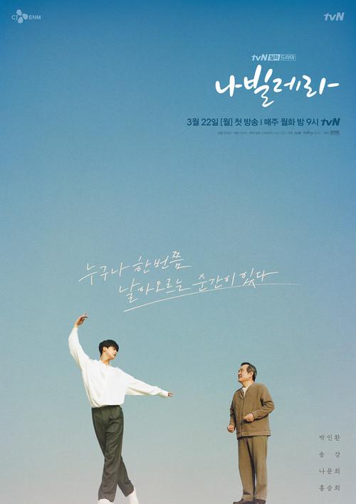 ☆韓国ドラマ☆《ナビレラ -それでも蝶は舞う-》Blu-ray版 全12話 送料無料!
