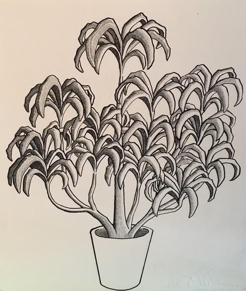太久磨「自画像としての植物 ペン画48」