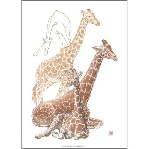 アート ポスター A4 サイズ KOUSTRUP & CO. - Giraffe キリン