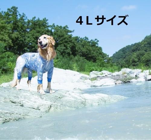【ALPHAICON】 フルドッグガード 4Lサイズ アルファアイコン FULL DOG GUARD 4L 犬 外遊び アウトドア 犬服