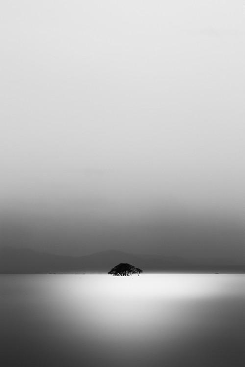 湖上独樹  (3302)
