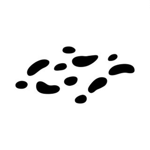 蝶の星 高解像度画像セット