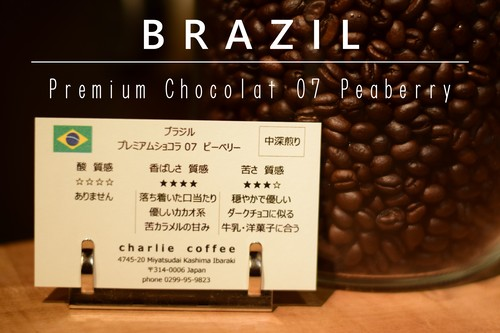 中深煎り/ブラジル プレミアムショコラ07(ゼロナナ) ピーベリー 1kg