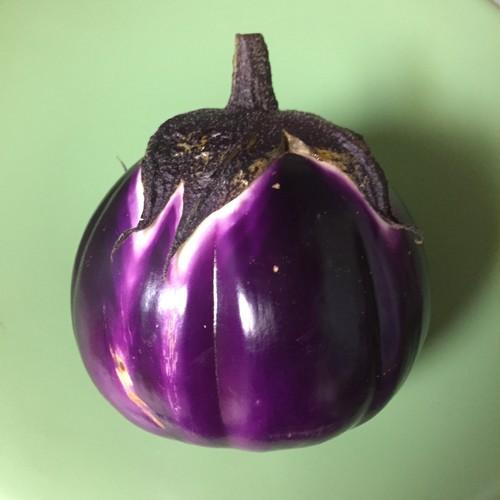 大和さん専用商品♦︎平日発送【プロ用 】自然栽培野菜 おまかせセット♦︎