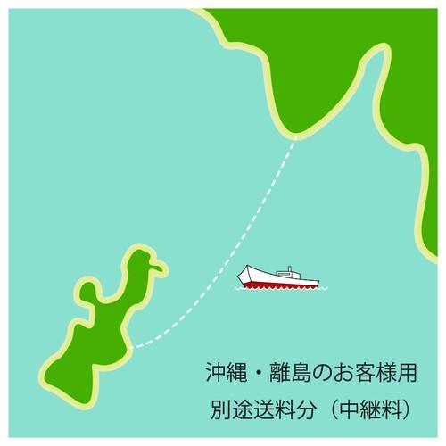 【追加中継料分】沖縄、離島のお客様はご購入下さい