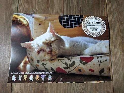 Gattoの保護猫たち大集合。賑やかに2021年もあなたの傍で見守りたい。購入で保護猫支援できるcalendar。Cafe Gattoオリジナル 2021年壁掛けカレンダー