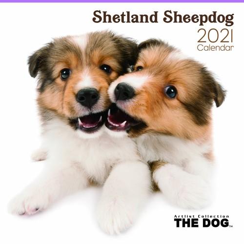 2021年 THE DOGカレンダー【大判サイズ】シェットランド・シープドッグ