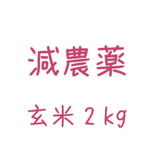 雪どけ米(減農薬)玄米 2kg