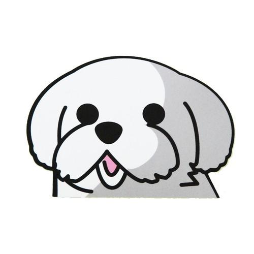 マルチーズ(小) 犬ステッカー