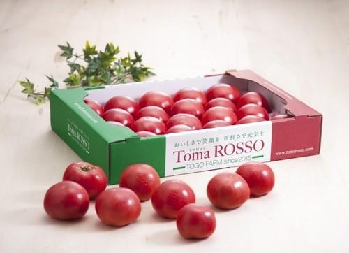 TomaROSSO(トマロッソ)4kg箱