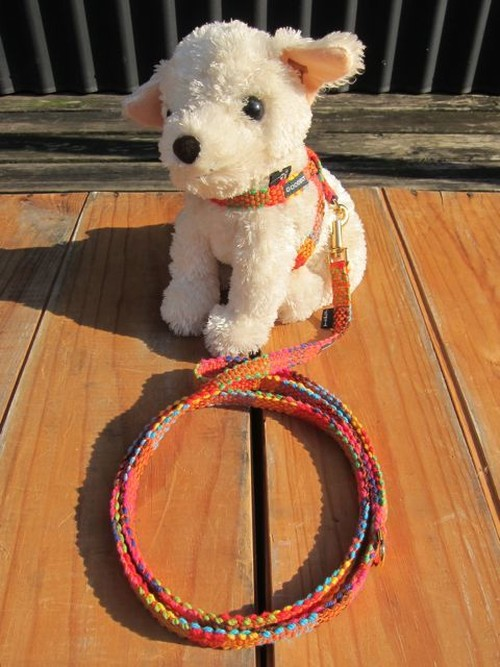 Woven Harness & Leash - XS