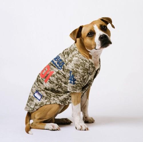 "MLBオフィシャル犬用ユニフォーム""DODGERS"" 【S〜XLサイズ】"