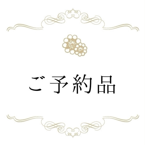 【ご予約品】星の妖精 片耳イヤリングとネックレスチャーム