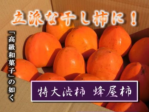 蜂屋柿 特大玉 1段詰 13~16玉