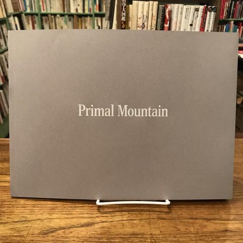 Primal Mountain / 濱田祐史