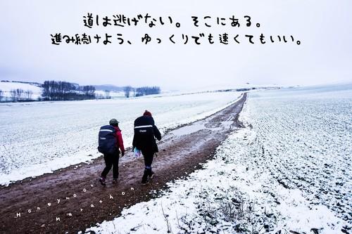 新作☆巡礼ポストカード⑧