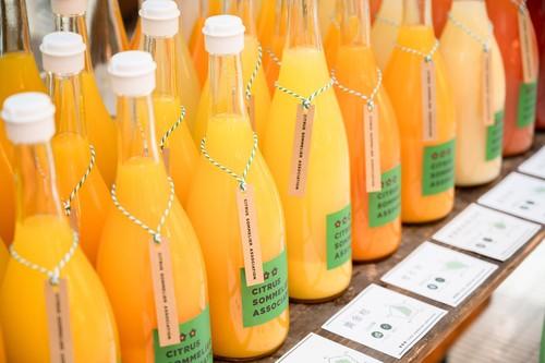 【12本 お得なおまかせセレクト】柑橘ジュースセット(おまかせ12種)