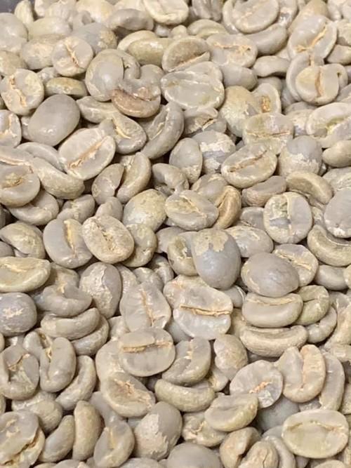 コロンビア グランモンターニャ クラベル生豆 100g