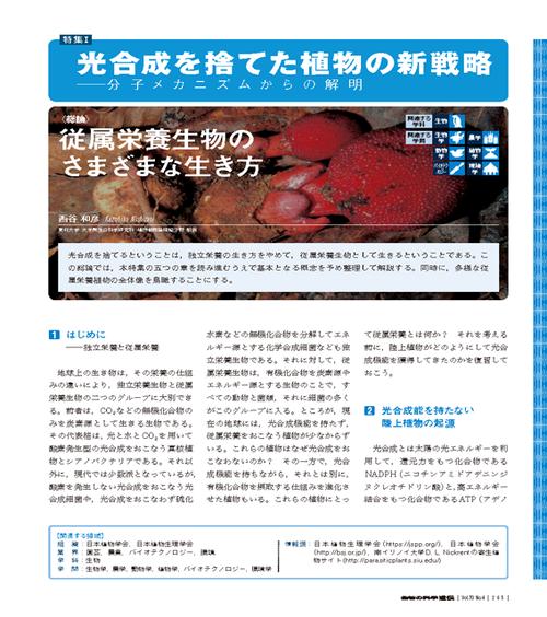 2016年7月号/特集1/西谷 和彦 氏
