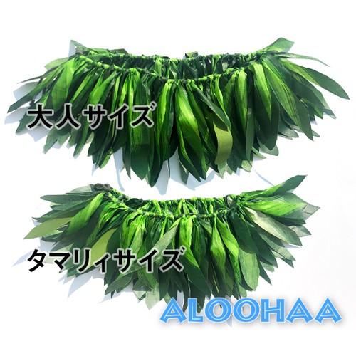 【タマリィサイズ】タヒチアングリーンリーフベルト  子供用 ヒップベルト/ヒップバンド/