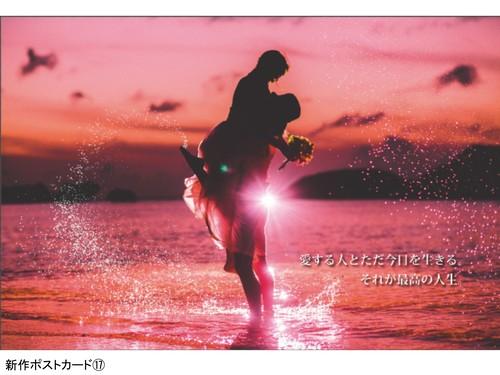 ポストカード 17☆新作☆