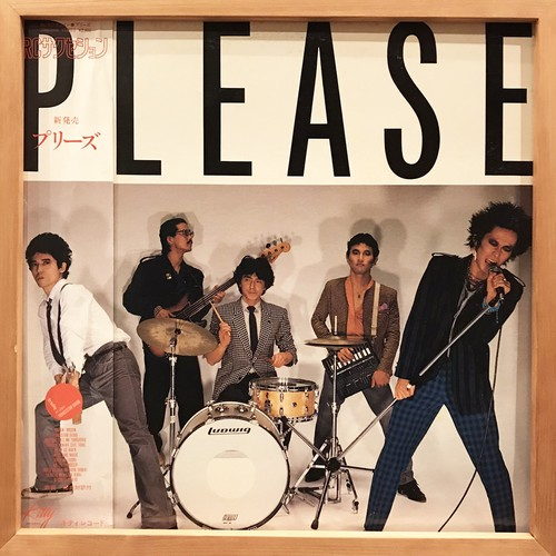 RC Succession ‎– Please (LP)