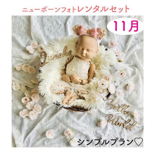 <11月ご出産予定日後半のお客様枠>シンプルプラン♡ニューボーンフォトレンタル女の子セット