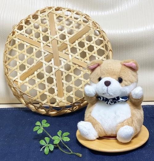 コロコロ秋田犬(風呂敷黒)