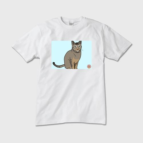 ※サンプル 商品説明 Tシャツ(メンズ・レディース・メンズVネック)