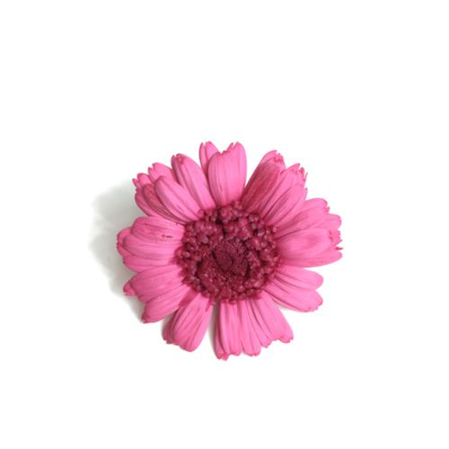 【5%OFF】プリザーブドガーベラ【1輪販売】   大地農園/ガーベラ プリンセスピンク/030170-0-181
