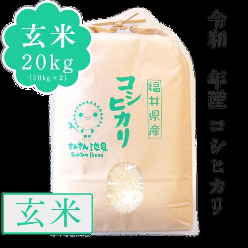 【新米】令和2年産 コシヒカリ 玄米20kg(10kg×2)
