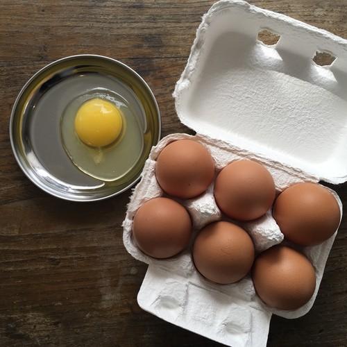 平飼い卵 6個入(〜8/29販売分)