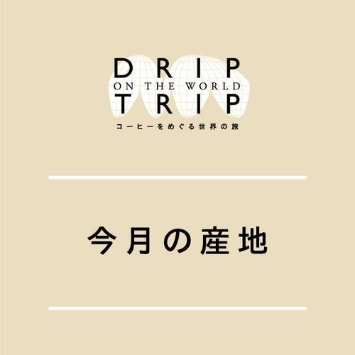 DRIP TRIP 今月の産地・ケニア!|深煎りー Fullcity Roast ー|400g