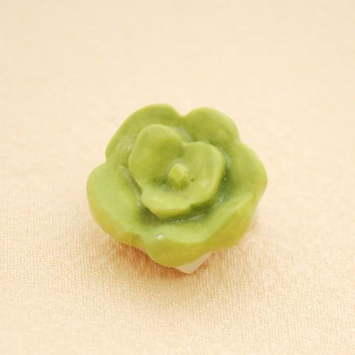 <通年/植物>緑のお花