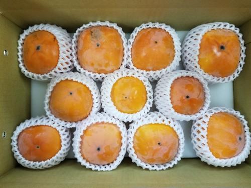 東京の味 柿(東京紅)の満足詰合せ