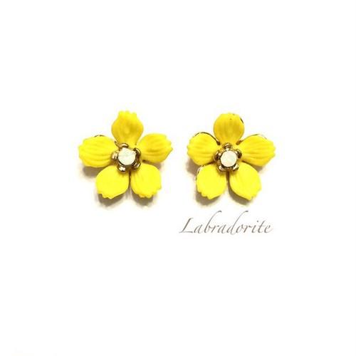P-63:yellow flower
