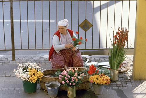 イスタンブールの花売り