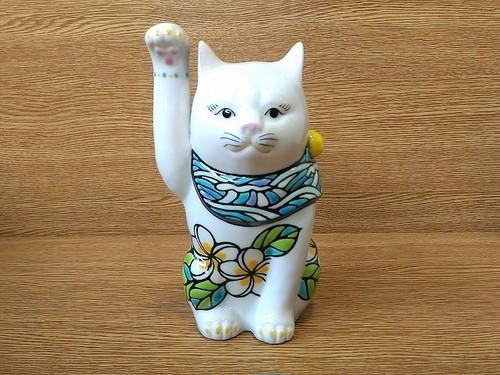 招き猫6.5寸 プルメリア ホワイト