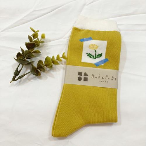 【select】garapago socks(Dandelion)
