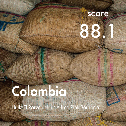 【Top of Top Coffee】100g Colombia Huila El Porvenir Luis Alfred Pink Bourbon