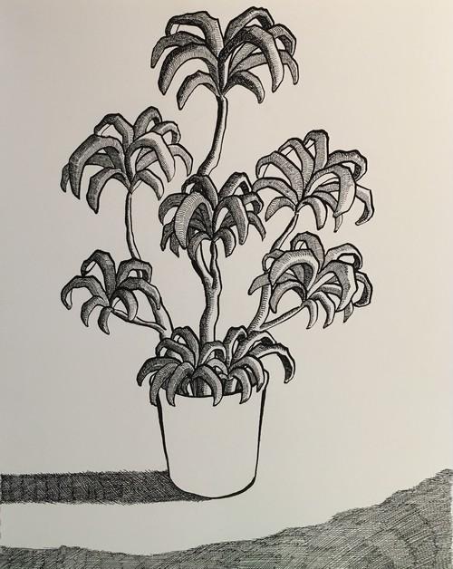 太久磨「自画像としての植物 ペン画33」