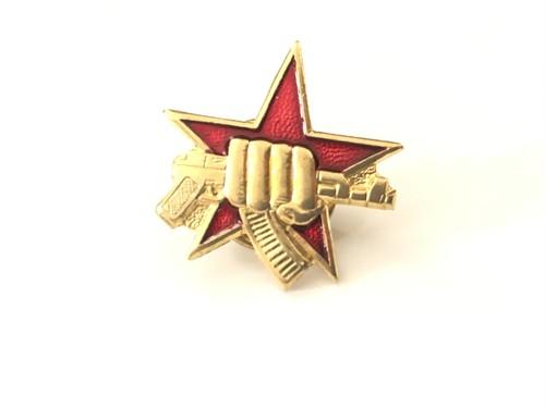 SPETSNAZ holding AK badge