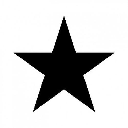 銀星 aiデータ