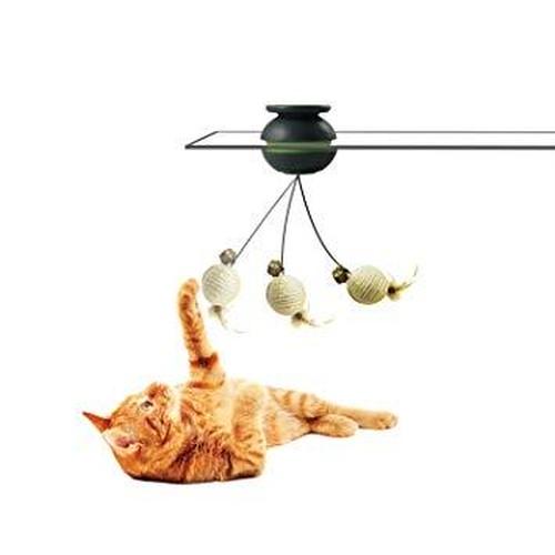 Froli Cat SWAY